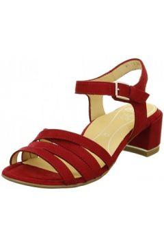 Sandales Ara sandale gra-hs 15911-06(98461443)
