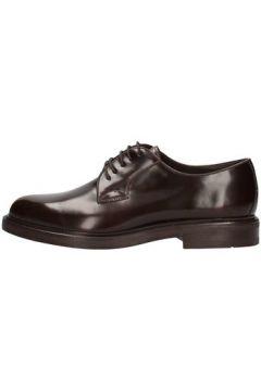 Chaussures Soldini 13207-l-091(88472106)