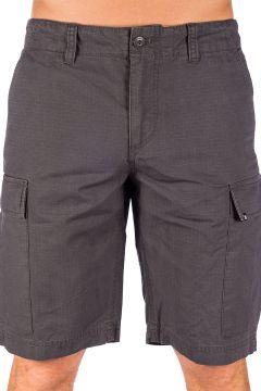 Element Legion Cargo II Walk Shorts grijs(100797171)