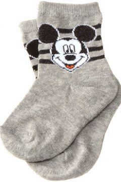 Chaussettes enfant Disney Chaussettes Niveau mollet - Coton - Disney(115547451)