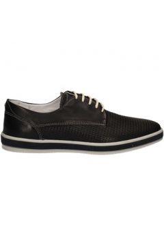 Chaussures Igi co 7687(115644186)