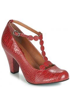 Chaussures escarpins Cristofoli CROCO IMPERADOR PHILLY(98463294)
