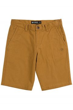 Element Howland Classic Shorts bruin(85188185)