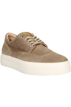 Chaussures Andrea Morelli 00873(98474104)