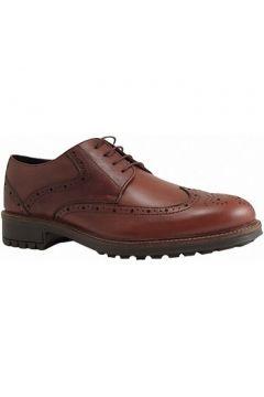 Chaussures Longo 29518(88711277)
