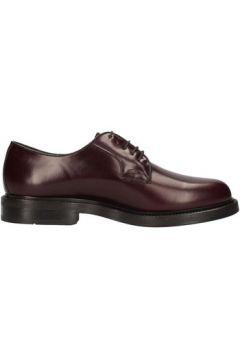 Chaussures Soldini 13207-L-091(88592197)