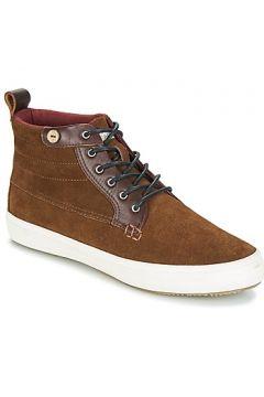 Chaussures Faguo WATTLEHI02(115394609)