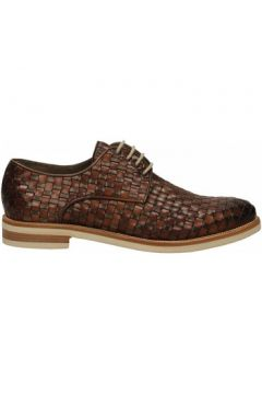Chaussures Brecos VITELLO(101561122)