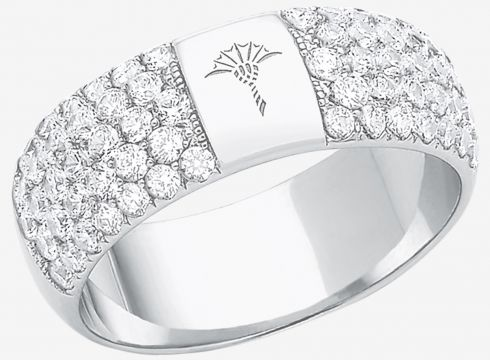 Ring mit Zirkonia in Silber(111057176)