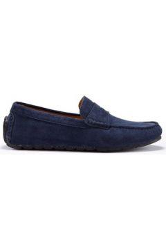 Chaussures Hugs Co. Mocassins Pneu Penny Daim(115404573)