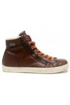 Chaussures Little Marcel Baskets Pratik H14IGC009 Marron(98751256)