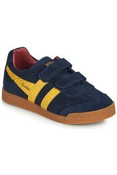 Chaussures enfant Gola HARRIER VELCRO(98479000)