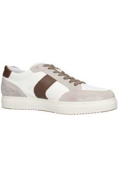 Chaussures Igi co 3132922(115595026)