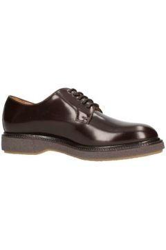 Chaussures Soldini 20266-l-v27(115594488)