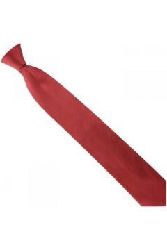 Cravates et accessoires Emporio Balzani cravate en soie unie bordeaux(115424279)