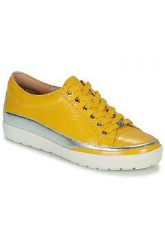 Chaussures Caprice BASKO(128004878)