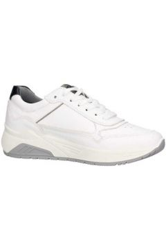 Chaussures Igi co 3129211(115595027)