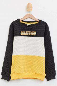 DeFacto Erkek Çocuk Renk Bloklu Baskılı Sweatshirt(108988108)