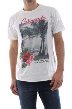 T-shirt Bomboogie TM5620 T JSSG(115628594)