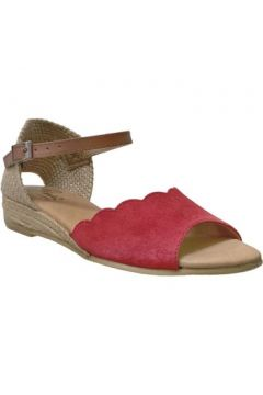 Sandales Pinaz 324(115606536)