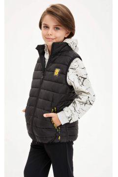 DeFacto Erkek Çocuk Kapüşonlu Şişme Yelek(125930500)