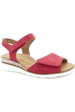 Sandales Ara 35709(101594126)