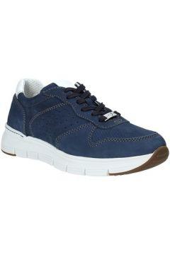 Chaussures Valleverde 17852(115649709)