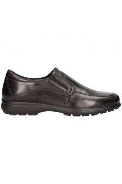Chaussures Valleverde 49871(115594640)