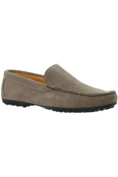 Chaussures Baxton Mocassins ref_bom46206 Taupe(98511940)