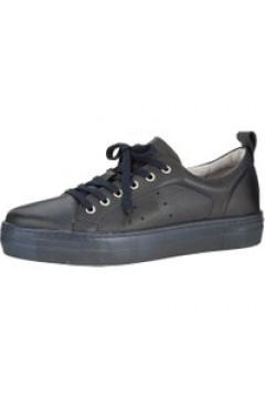 Plateausneaker Filipe Shoes Marineblau(111492424)