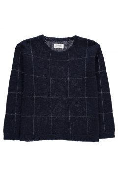 Pullover aus Wolle und Mohair Magnetic(113872359)