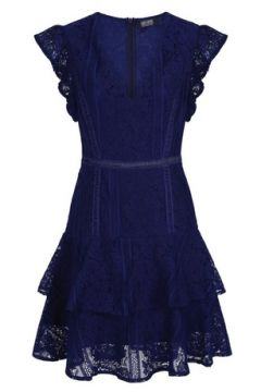**Girls On Film Cobalt Lace Tier Dress(94906172)
