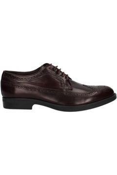 Chaussures Stonefly 105700(115441755)