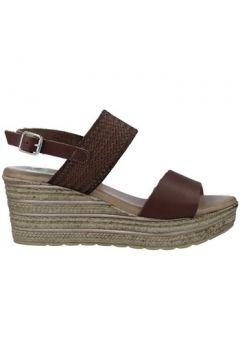 Sandales Calzados Vesga 5047 Sandalias con Cuña de Mujer(127930784)
