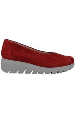 Chaussures Pepe Menargues 2070 Zapatos Bailarinas de Mujer(127930556)