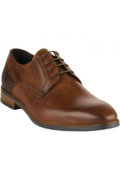 Chaussures First Collective Chaussures à lacets homme - - Marron - 40(127933082)