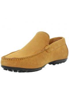 Chaussures Baxton Mocassins ref_bom43398-miel(88519535)