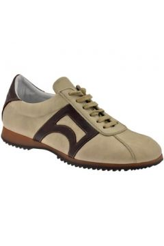 Chaussures Bocci 1926 CampusfaibleSneakers(127857749)