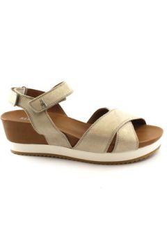 Sandales Benvado BEN-E18-37006010(127865582)