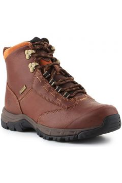 Boots Ariat Berwick lace GTX Insulated 10016298(115525926)