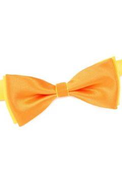 Cravates et accessoires Dandytouch Noeud papillon BeCool Bantry(115537671)