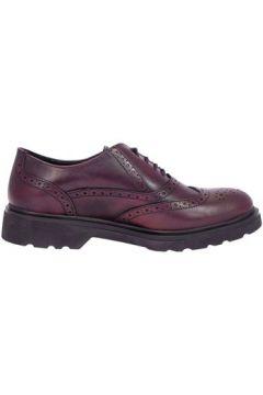 Chaussures Pregunta Ial24760(115594258)