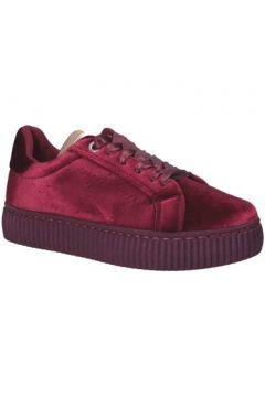 Chaussures Pluspartout AFRODITE(115661201)
