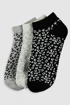 Kadın Desenli Patik Çorap 3\'lü(127752422)