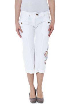 Pantalon Datch 19W4313(115587976)