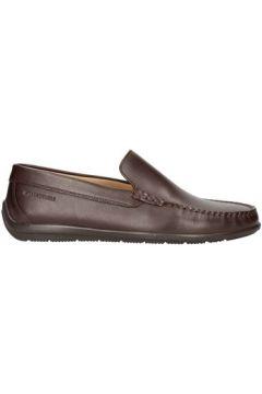 Chaussures Lumberjack Sm40602-003(115594821)