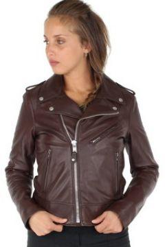 Veste Schott Blouson style perfecto en cuir agneau ref_33479 Plum(128012400)