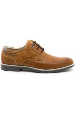 Chaussures Pikolinos M9N-4282(115504255)