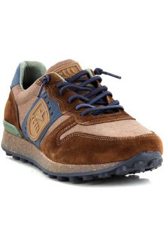 Chaussures Cetti C1169(127934993)
