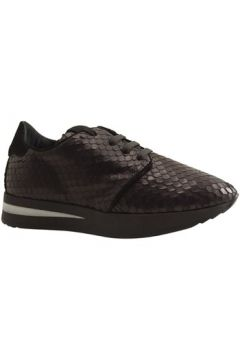 Chaussures Reqin\'s EDDY AFRICA(115426554)